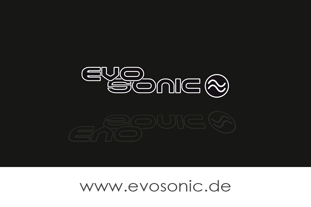 Evosonic - Partner - Assorted Music Records