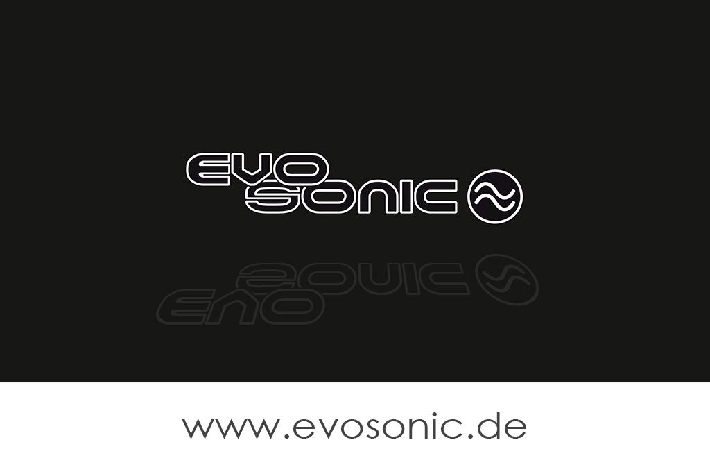 Evosonic - Partner - Assorted Music Records